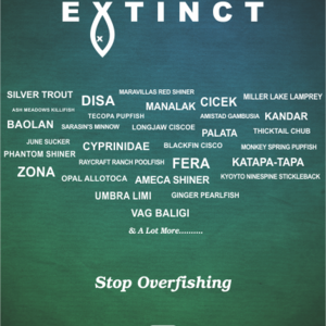 Overfishing Results
