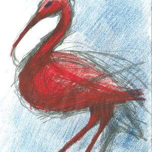 Roter Ibis in der Volière Zug