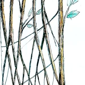 Mangrove Modular