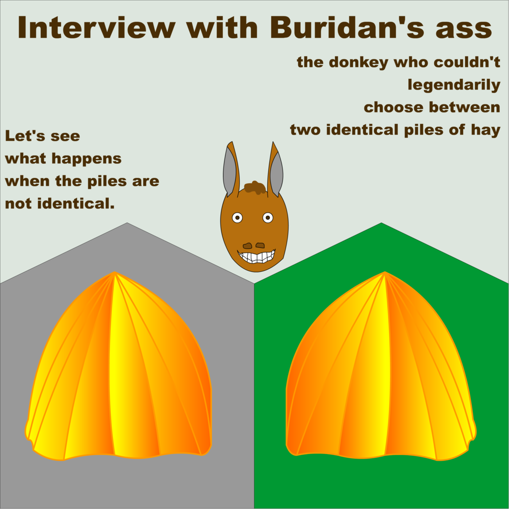 Image result for quotes buridan ass