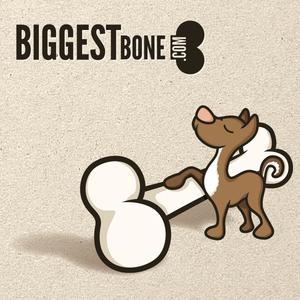 Biggest Bone (.com)