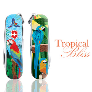 Tropical Bliss