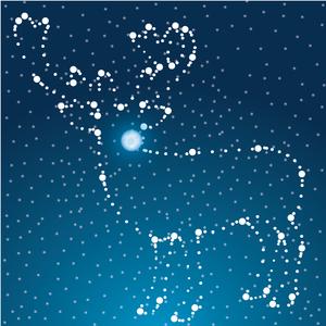 Raindeer Constellation