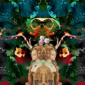 Mary's magic garden