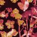 Retro Orchidaceae II