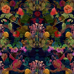 Pattern Portfolio by Julia Bianchi