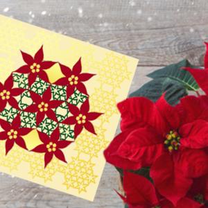 Poinsettia- christmas star