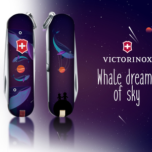 Whales dreams of sky