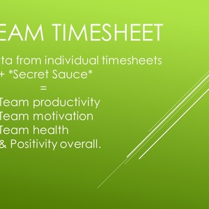 Team Timesheet_Don't Vote Yet (W.I.P.)