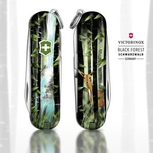 BLACK FOREST - SCHWARZWALD - GERMANY