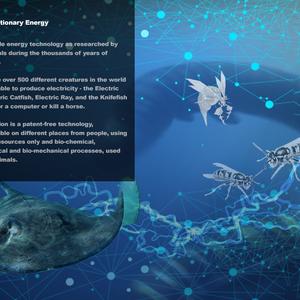 BioEvolutionary Energy
