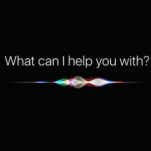 Siri Learning Screens